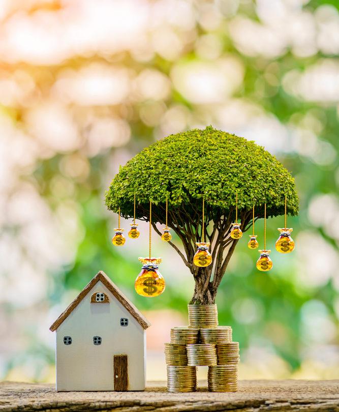Savings Growing Interest